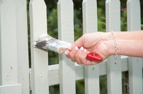 Gjerdeloven gir deg rett til å sette opp gjerde mot naboen. I noen tilfeller kan du også kreve at naboen spleiser på kostnadene.