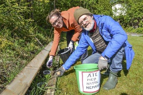 Cathrine Stustad og Brede Holst har satt Konnerud på kartet med sin metode. Drammen kommune følger nøye med og støtter prosjektet økonomisk.