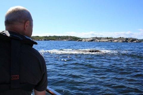 I de mest hektiske ferieukene blir det rapportert inn over 400 skader på båter langs kysten, de aller fleste etter grunnstøtinger.