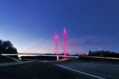 For sjette året på rad støtter Statens vegvesen Rosa Sløyfe-aksjonen ved å farge Kolomoen bru over E6 i Stange rosa.
