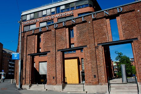 Høgskolen i Oslo og Akershus vil  spille på lag med kommunepolitikere. Men de bruker i stedet konsulenter.