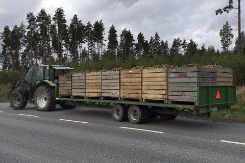 Føreren av denne traktoren ble anmeldt for ikke å ha sikret lasten.