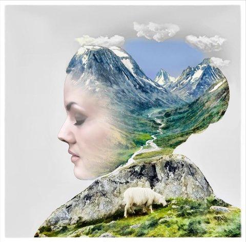 MINDFULNESS: Bildet Mindfulness av Liz Ravn.