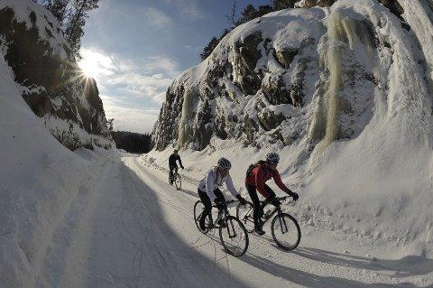 Også scener som dette bidrar til å skape entusiasme hos sykkelelskende i utlandet. (Alle sykkelfotos: Rupert Fowler.)