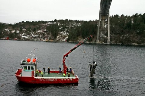 I februar ble det hentet opp ti biler fra dypet under Hagelsundbrua. Gjensidige mener det dreier seg om forsikringssvindel.