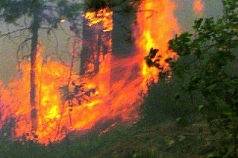 Tørke og høye temperaturer fører til at flammene sprer seg raskt.