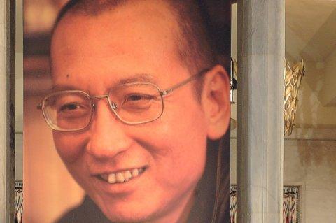 Yu Jie har i mange år vært en personlig bekjent og venn av Liu. Boka er utgitt i Hongkong på forlaget New Century Press.