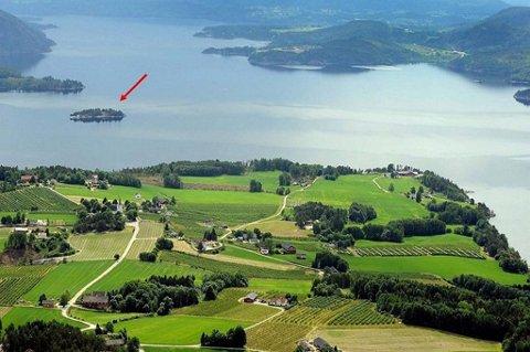 Har du 2,75 millioner kroner til overs kan du nå få kjøpt din egen øy i nordenden av Norsjø i Telemark.