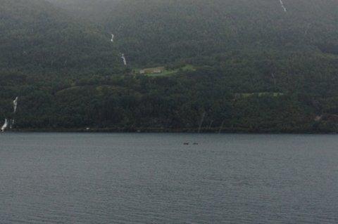 Begge SFE-montørane vart tysdag ettermiddag trygt berga ned frå fjordspennet. Dei firte seg ned i båt ved eiga hjelp.
