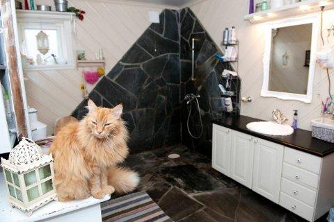 Pusen trives på kommoden på badet.