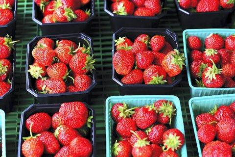 Det er lite plantevernmidler i norske jordbær.