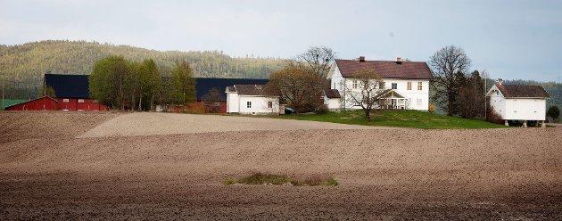 HiT GÅR FLYTTELASSET: Mæle skal flytte til Nordre Nordby gård på Lierfoss.