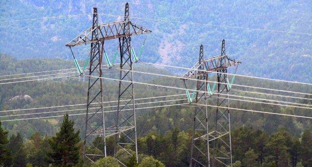 Selv om strømprisen er rekordlav, er nettleien den samme. Foto: Vidar Ruud, ANB