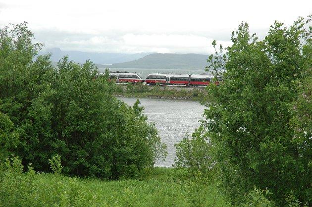 Et lokomotiv lekket diesel på Fauske stasjon fredag. Toget var på vei til Bodø, og passasjerene ble fraktet videre med buss og taxi.  Som et resultat av  dette, ble det sørgående toget (bildet)  80 minutter forsinket da det måtte vente i Valnesfjord.