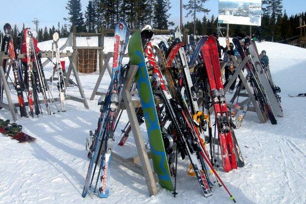 Hva slags forsikring må du egentlig ha for å få erstatning hvis skiene blir stjålet uten for skihytta på påskefjellet?