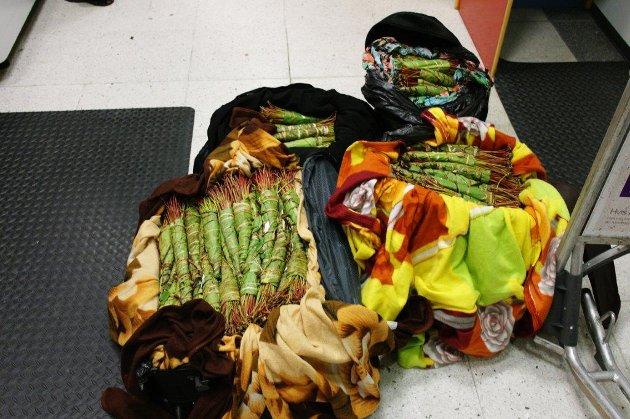 De to smuglerne hadde ulike forklaringer på hva alle plantene skulle brukes til.