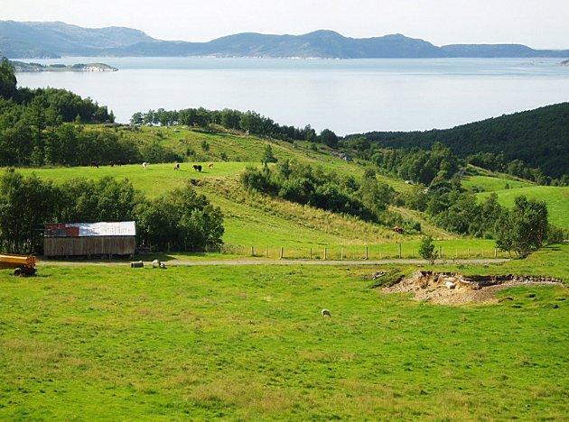 GAMMEL BOPLASS: Her i området innerst i Fagervika levde noen av de første menneskene i Norge. I bakgrunnen ligger Rana med øyene Finnkona og Løkta. Bebyggelsen i Fagervika ligger skjult bak den skogkledde åsen.(Foto: Snorre Olsen)