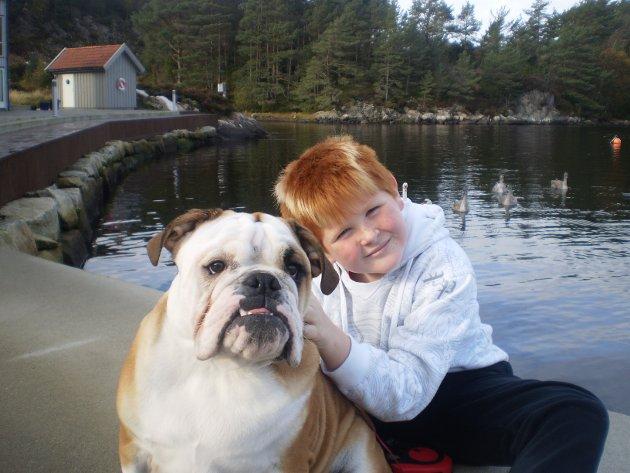 KANDIDAT 253: Hei, jeg vil nominere min aller beste venn i hele verden, til Bergens beste hund. Oscar er en Engelsk bulldog på 14 mnd. Han er en god lytter og deler den gode varmen sin gladelig. Han er alltid like glad for og se meg, da blir jeg også glad!   Hilsen Aleksander Vold , 9år