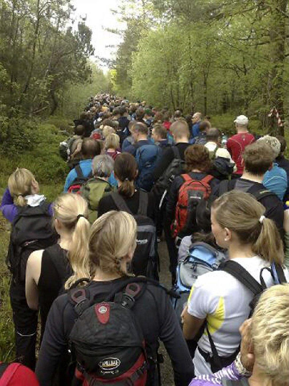 5500 personer var forhåndspåmeldt til årets 7-fjellstur (24.05.09). (Foto: Stian Espeland (MMS))