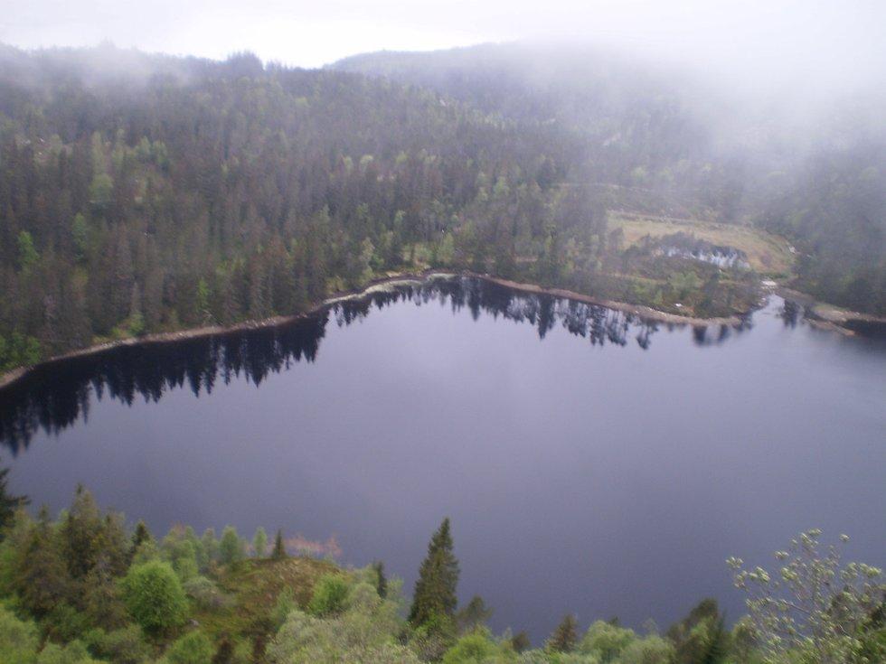 Å gå 7-fjellsturen er en stor og variert naturopplevelse. Skog, fjell og bare vidder, avløst av kratt, stup og grusvei. Innimellom passerer man også flere vann (24.05.2009). (Foto: Jeanette E. Fosse)