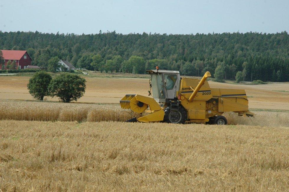 Den 1. juli er siste frist for å melde inn kandidater til Bygdeutviklingsprisen 2012 i Østfold.