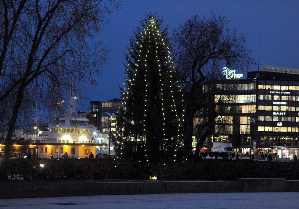 Utendørs juletre bør få stå i fred uten nattlige julesangere, mener politiet.