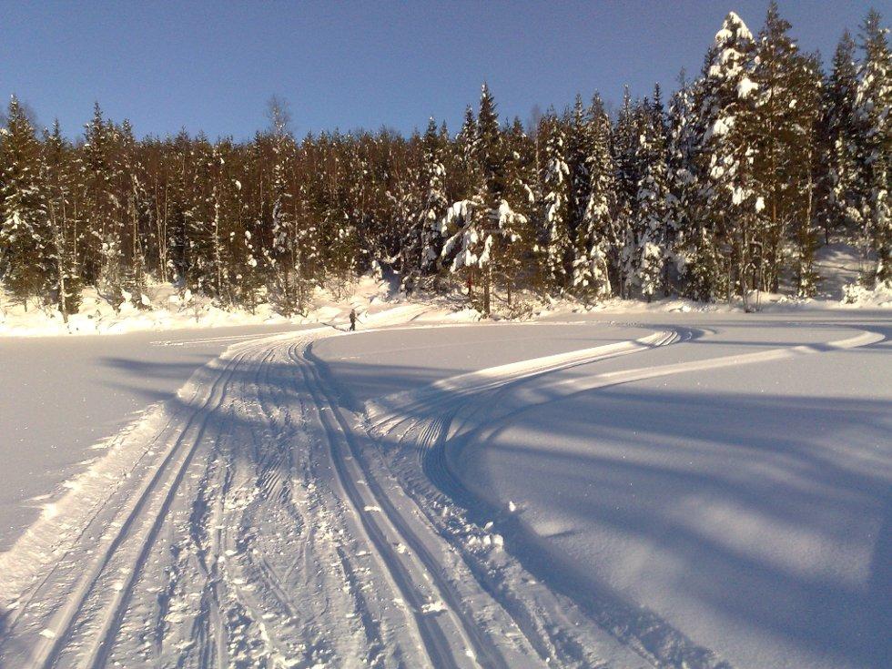 Kalven på Jevnaker vestås er et av områdene som fortsatt byr på fine skiløyper.