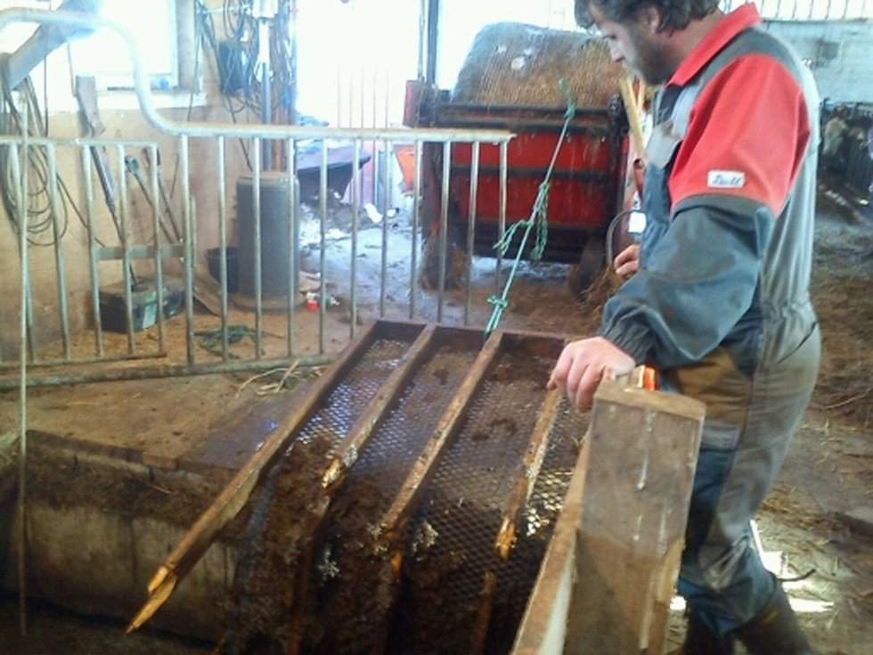 Vegar Bentzen i sauefjøset, ved metallrista som knakk slik at 36 sauer raste i gjødselkjelleren. mms-foto: Hilde Bentzen