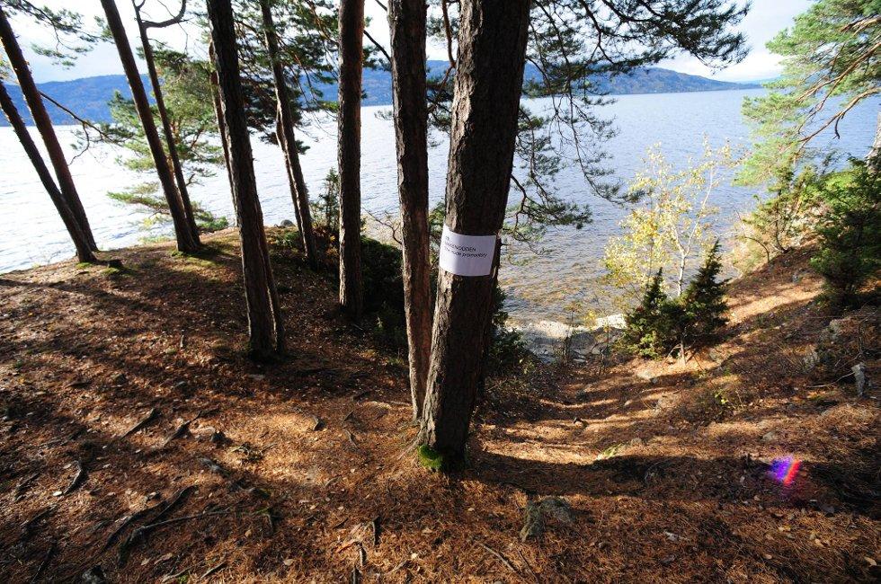 Nakenodden er Utøyas badeplass. Mange AUF-ere løp hit da Anders Behring Breivik begynte å skyte. Mandag  startet tingretten gjennomgangen av 60 drap på Utøya.