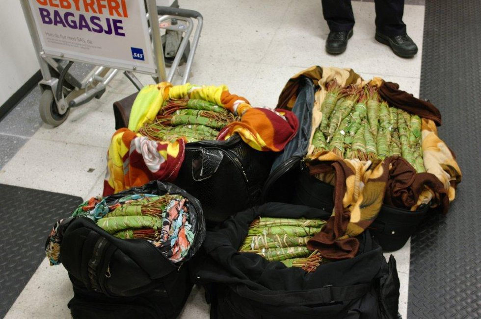 Dette lå i bagasjen til en mann (44) fra England og en 48 år gammel kvinne med dansk nasjonalitet på Flesland på torsdag.