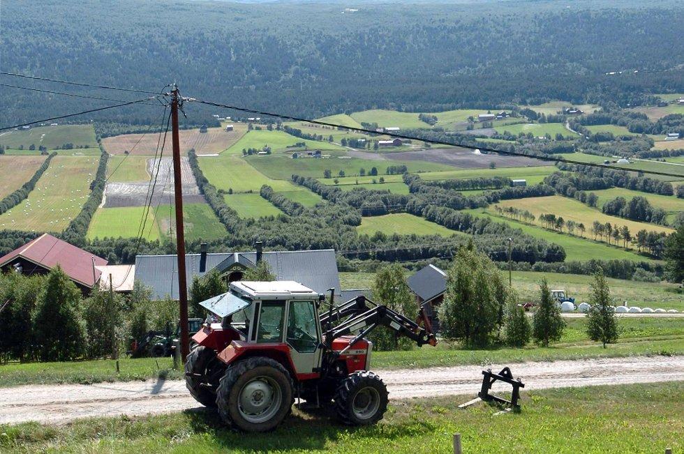 Til tross for eurokrisen og høy arbeidsledighet er det få søreuropeere i norsk landbruk. Der er det fortsatt østeuropeerne som dominerer.