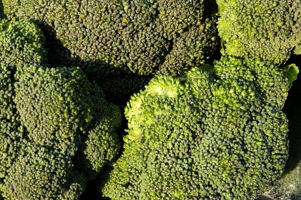 I fjor startet Gilhus Gartneri i Lier og Wiig Gartneri på Klepp på Jæren prøveproduksjoner av brokkolini i norsk jord.
