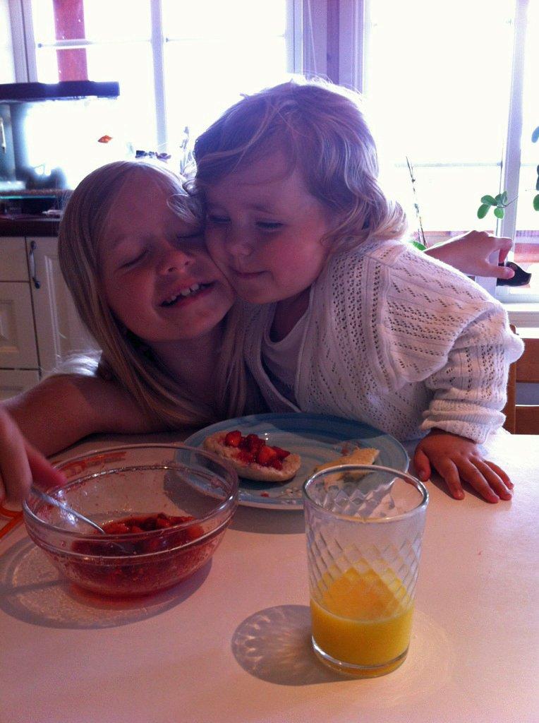 SØSKENKJÆLIGHET: Søstrene Isabel (7) og Cecilia Mjelde Karlsen (2) sender en sommerhilsen fra Nordarnøy, der de bor. De hilser til mormor og morfar på Rasta. Hilsen Brit Mjelde.                                  Foto: Brit Mjelde (Foto: )