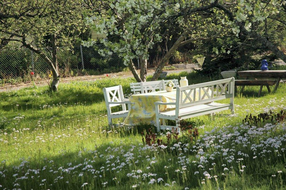 I tiden: Blomstereng med enkle tremøbler.