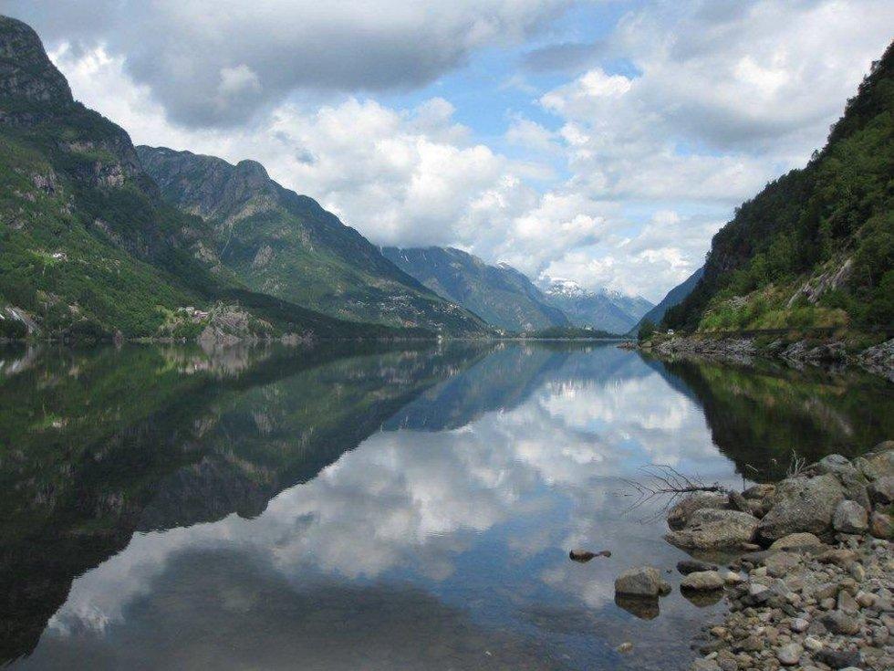 Sommerhilsen fra Hardangerfjorden. Foto: Marian Veenstra (Foto: )