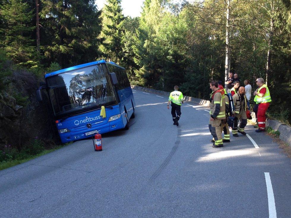 Bussen kom ut i grøfta og ble liggende inntil fjellsiden. Foto: Stein Johnsen