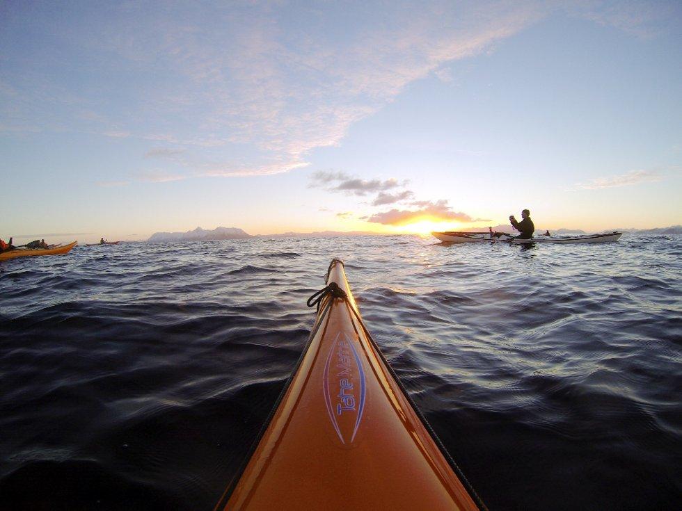 Padlerne fra Vesterålen, Harstad og Lofoten fikk se både sola og kvalen. (Foto: Marian Leonhardsen)