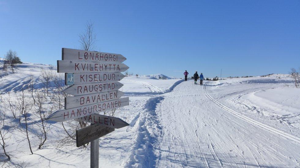 Vinterferiebilde fra Voss Resort -  langrennsløypa på Hanguren, 24. feb (Foto: Jan Einar Thorsen)
