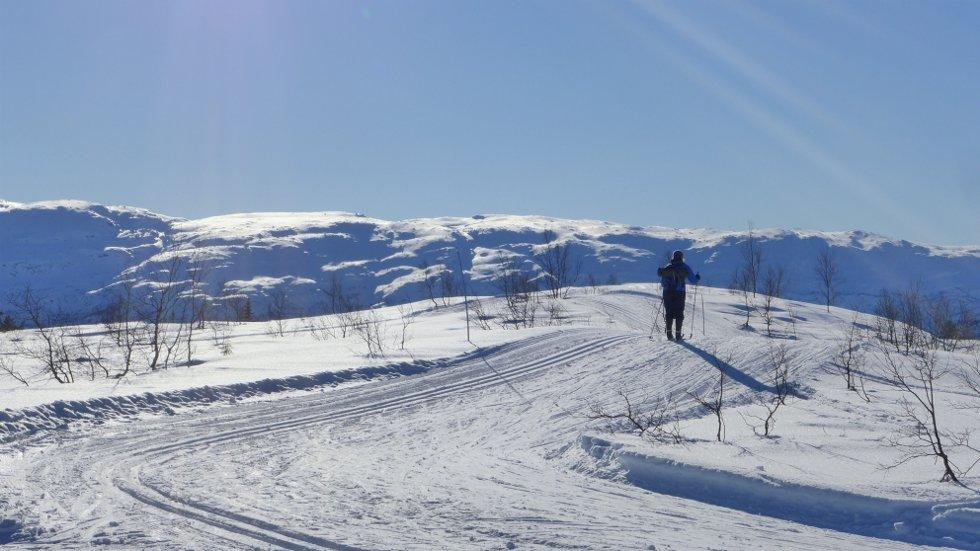 Vinterferiebilde fra Voss Resort_ langrennsløypene på Hanguren, 24. feb. (Foto: Jan Einar Thorsen)