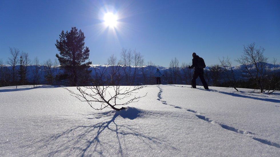 Vinterferiebilde fra Voss Resort - Gråsida i bakgrunnen, 24. feb. (Foto: Jan Einar Thorsen)