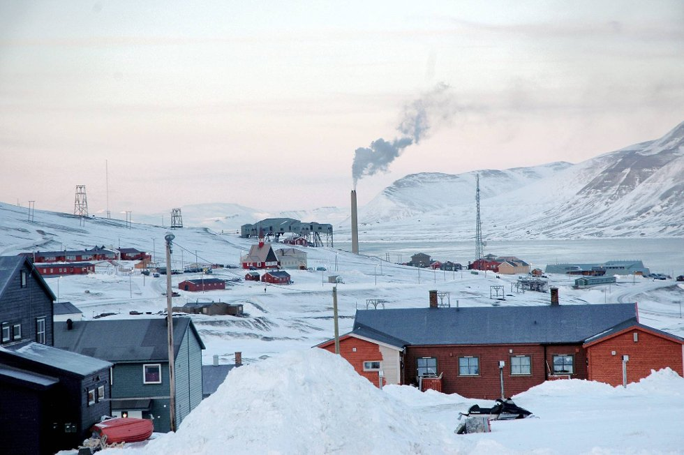Sysselmannen på Svalbard har valgt å henlegge saken etter at en isbjørn ble avlivet i Hyttevika ved Hornsund på Svalbard forrige måned.