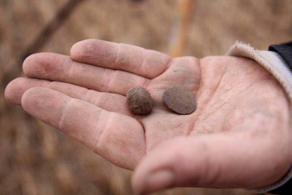 Like før HA kom, fant Hammer både en gammel mynt og en blykule på jordet.