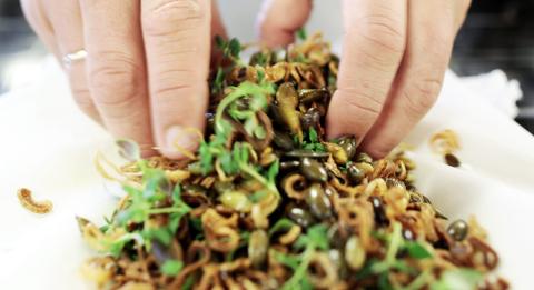 Det magiske drysset består av sprø sjalottløk, puffede gresskarkjerner og flaksalt toppet med timiantopper.
