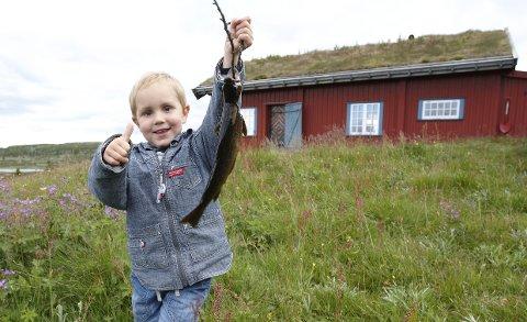 Salget av fjellhytter rundt Valdres går jevnt, melder meglerne.
