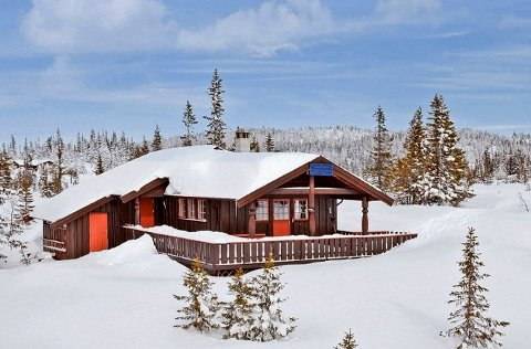 Innholdsrik hytte på Vegglifjell. Prisantydning 950.000 kroner.
