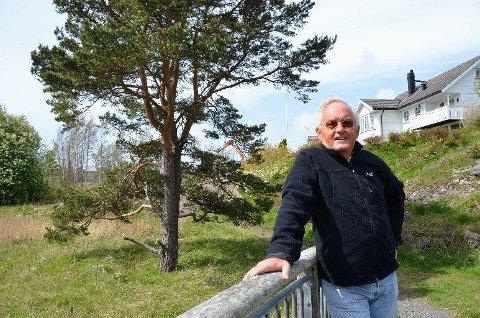 Terje Bratt vil la stor furu ved Thorsholmen / Skaustranda stå. Han taler treets sak.