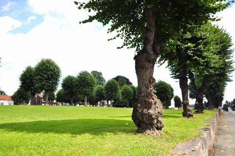 Kirkegårdsparken.