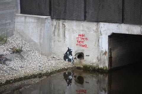 Graffiti-rotta er i underkant av en meter høy.