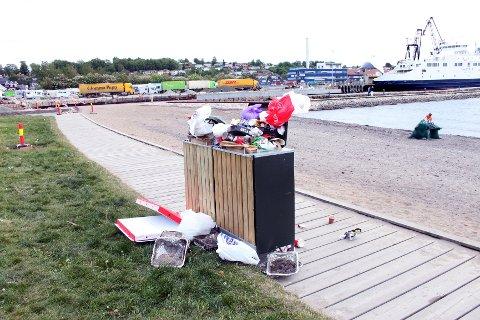Her er rester etter mange måltider blant solhungrige mossinger.