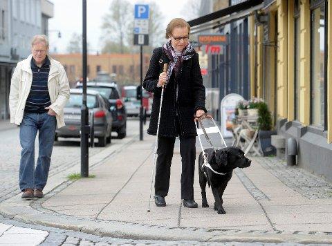 Blinde Gerd Lie-Haugen er avhengig av førerhunden Tesse for å komme seg ut på egen hånd. Hun og mannen Kjell Lie-Haugen opplever at mange viser hensyn. Foto: Olaf Akselsen